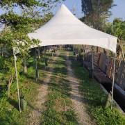 庭園自助餐式婚宴活動 歐式帳棚 出租搭設 (3)