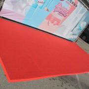 宏佳騰機車主題背板 Dory新車宣傳活動 紅地毯鋪設