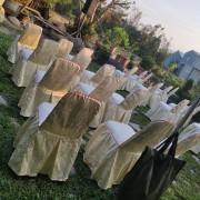 庭園自助餐式婚宴活動 貴賓椅 香檳金椅套 出租運送 (2)