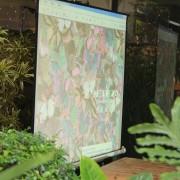 Thaï.J泰式庭園餐廳 投影設備測試 (8)