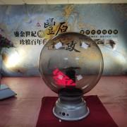 豐原地政檔案展 啟動儀式電光球 出租運送 (3)