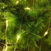霧峰林家 頤圃園區 古蹟推廣活動 串燈 聖誕燈 小彩燈 網燈 出租搭設 (15)