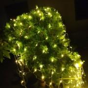 霧峰林家 頤圃園區 古蹟推廣活動 串燈 聖誕燈 小彩燈 網燈 出租搭設 (7)