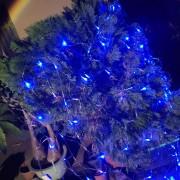 霧峰林家 頤圃園區 古蹟推廣活動 串燈 聖誕燈 小彩燈 網燈 出租搭設 (8)