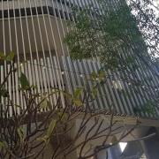 大毅幸福教育基金會 樹幸福社區聖誕節活動 裝飾串燈 出租搭設 (3)