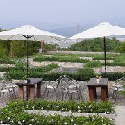 29號花園 4月18日 婚宴活動 白色遮陽傘 出租運送 (11)