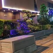 國碩聖誕節佈置網燈 出租施工搭設