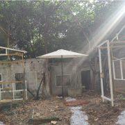 雲林科大 舊社區重建活動 桌椅帳篷 行動音響 白色陽傘 出租運送 (8)