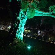 斯里蘭卡 新年慶典餐會 場地佈置 全彩投射燈 出租運送 (10)