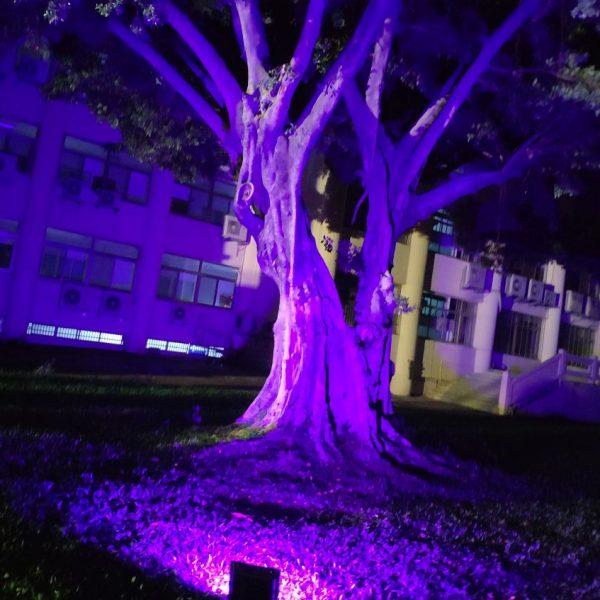 斯里蘭卡 中興大學草地廣場 新年慶典餐會 場地佈置 全彩投射燈 出租運送 (11)