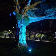 斯里蘭卡 新年慶典餐會 場地佈置 全彩投射燈 出租運送 (13)