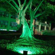 斯里蘭卡 新年慶典餐會 場地佈置 全彩投射燈 出租運送 (14)